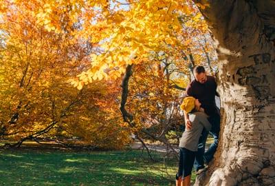 3=2 Herbstspecial