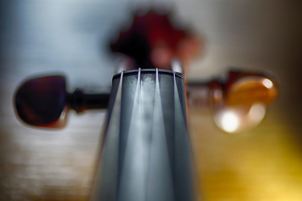 Musikinstrument für das Angebot Musik an mitteldeutschen Höfen in Eisenach auf der Wartburg