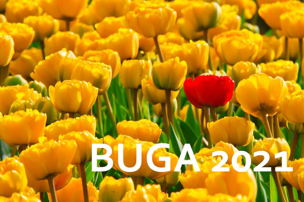 Angebote zur BUGA Erfurt 2021 im Wartburghotel
