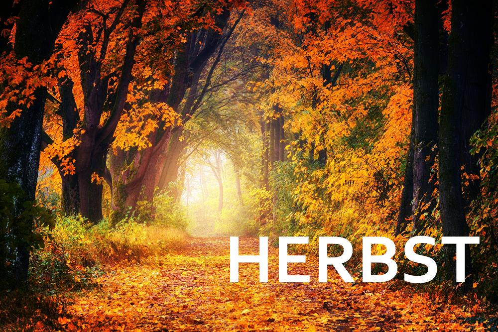 Herbsturlaub im Wartburghotel in Eisenach buchen
