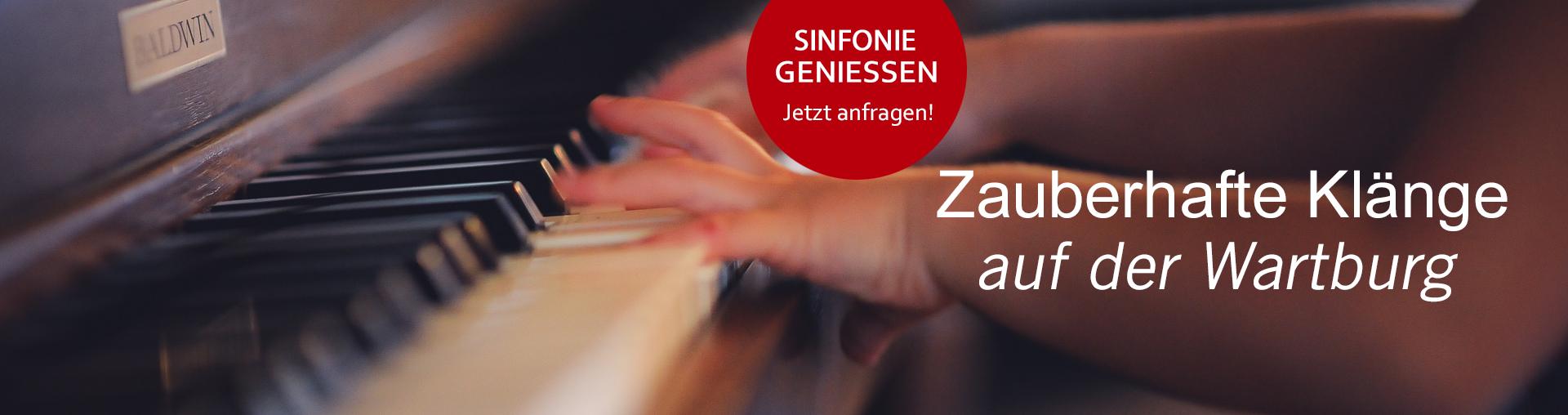 Bild zu Anfrage Angebot Sinfonie bei Hofe
