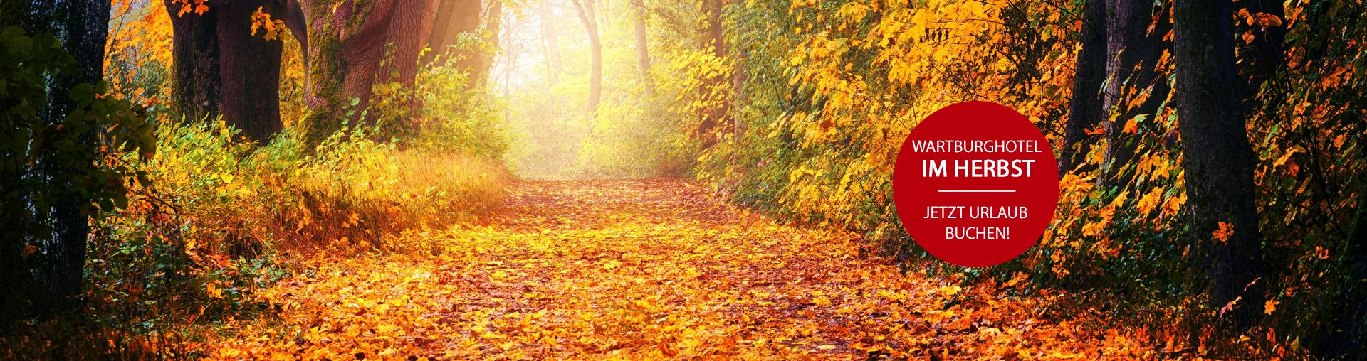 Bild zu Herbsturlaub in Thüringen